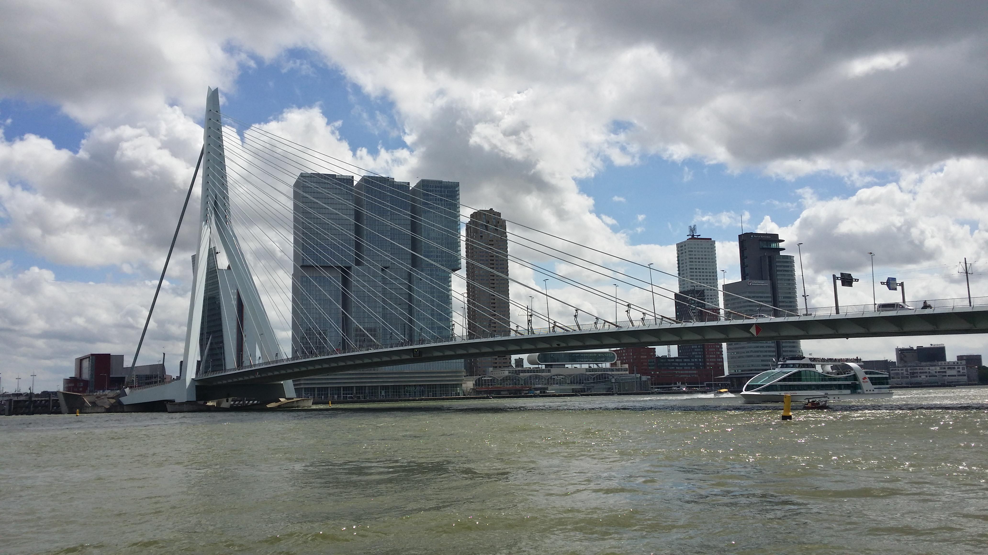 Ersamusbrücke in Rotterdam, Fluss die Maas, Hochhäuser im Hintergrund zu sehen